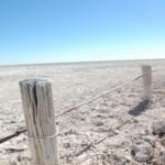 Etosha Plain, Namibia