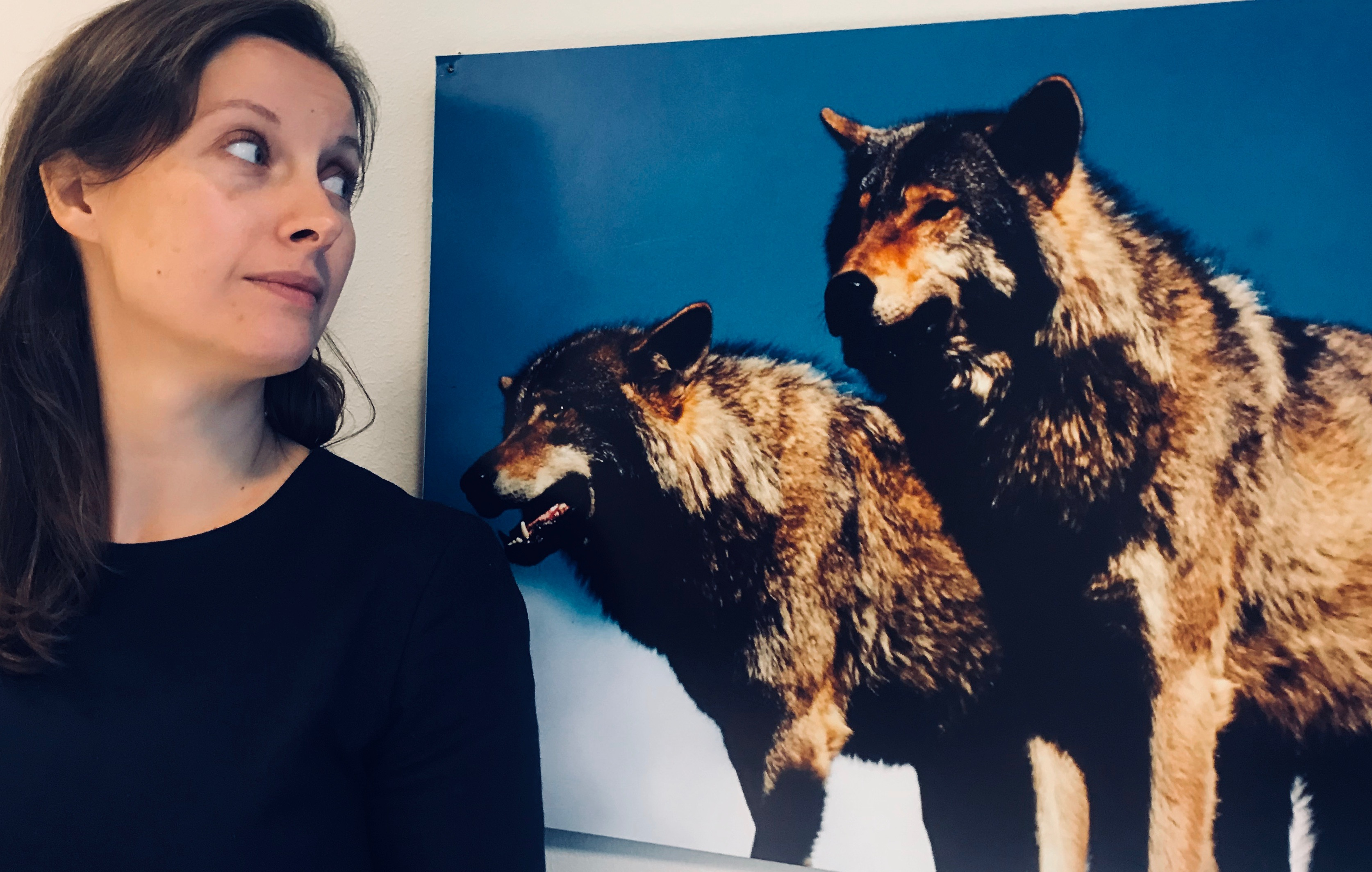 WWF's Ingrid Lomelde wants to protect Norwegian wolves